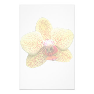 Yellow Orchid Watermark Stationery