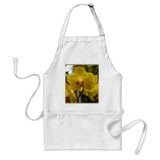 Yellow Orchids apron