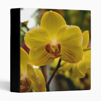 Yellow orchids binder