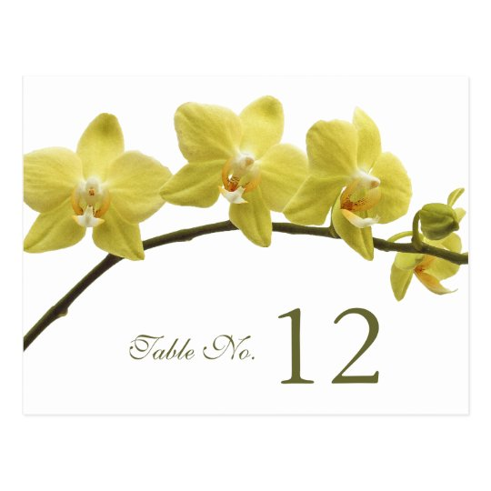 Yellow Orchids Table Number Card