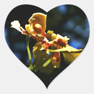 Yellow Orquídea