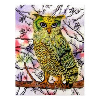 Yellow Owl Postcard