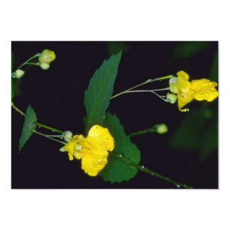 yellow Pale Touch-Me-Not (Impatiens Pallida) flowe Personalized Invitation
