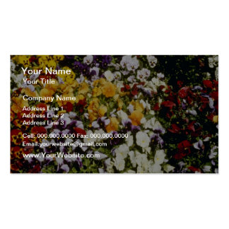 Yellow Pallet of flowers, Victoria, British Columb Business Card