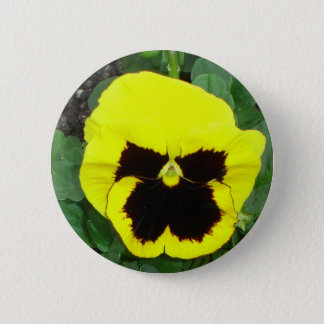 Yellow Pansy Button