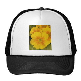 Yellow Pansy Flowers Mesh Hat