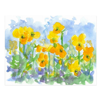 Yellow Pansy Flowers Watercolor Pastel Blue Postcard