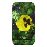 Yellow Pansy I iPhone 4 Covers