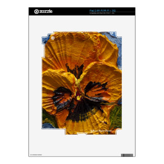 Yellow Pansy iPad 2 Decals