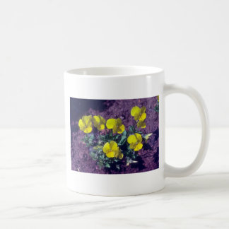 yellow Pansy (Viola) flowers Classic White Coffee Mug