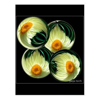 Yellow Paper Daisy Postcard