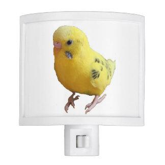 Yellow Parakeet Budgie Photograph Night Light