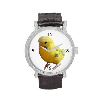 Yellow Parakeet Budgie Photograph Wrist Watches