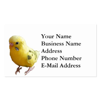 Yellow Parakeet Photograph Business Card