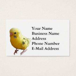 Yellow Parakeet Photograph Business Card