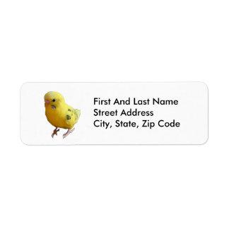 Yellow Parakeet Photograph Label
