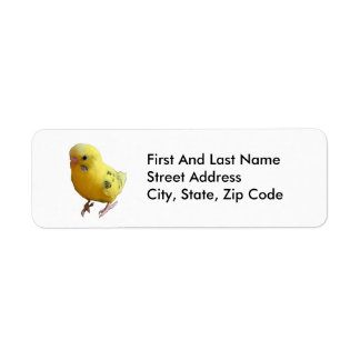 Yellow Parakeet Photograph Return Address Label