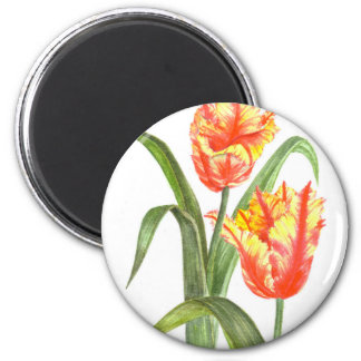 Yellow Parrot Tulips Flower Floral Art Magnet