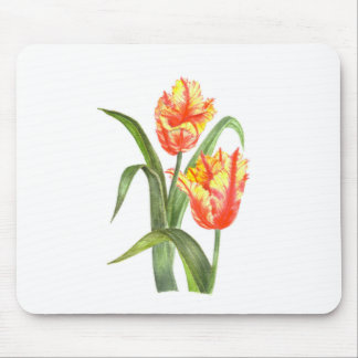 Yellow Parrot Tulips Flower Floral Art Mouse Pad