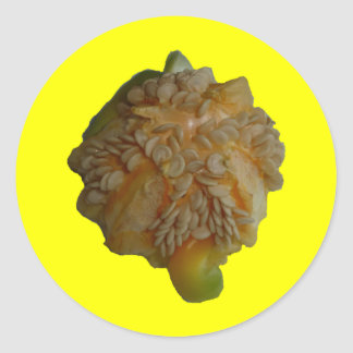 Yellow Pepper - wraps off Classic Round Sticker