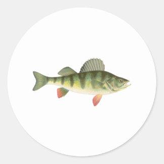 Yellow Perch Art Sticker