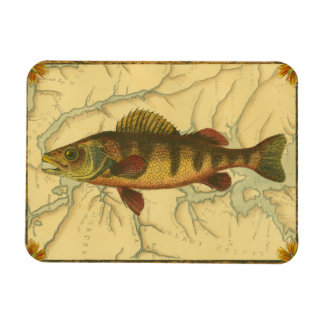 Yellow Perch on Map Magnet