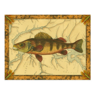 Yellow Perch on Map Postcard