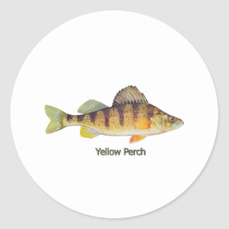 Yellow Perch (titled) Classic Round Sticker