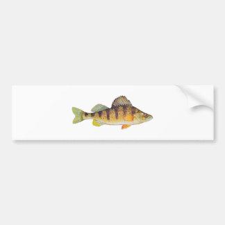 Yellow Perch (untitled) Bumper Sticker