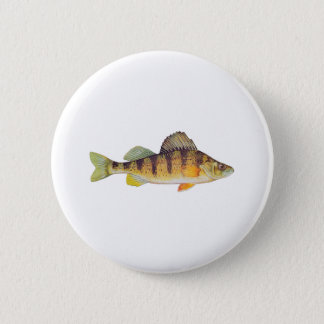 Yellow Perch (untitled) Button