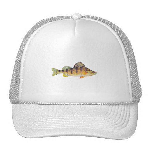 Yellow Perch (untitled) Trucker Hat