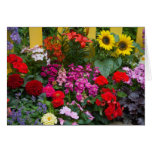 Yellow picket fence with flower garden in cards
