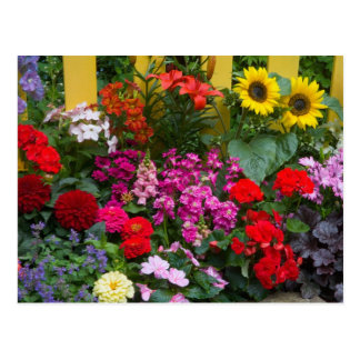 Yellow picket fence with flower garden in postcard