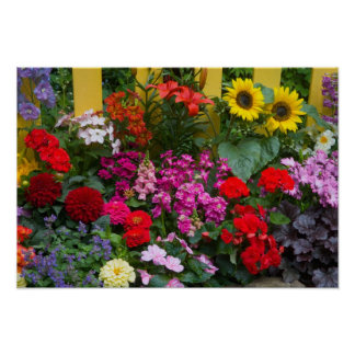 Yellow picket fence with flower garden in poster