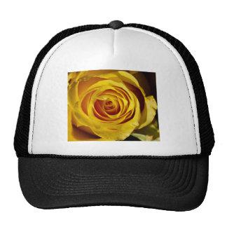 Yellow pink trucker hat