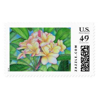 Yellow Pink Plumeria Postage