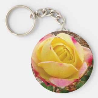 Yellow Pink Tipped Rose Basic Round Button Keychain