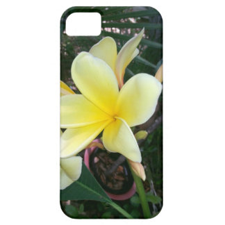 yellow plumeria Hawaiian lei flower iphone case