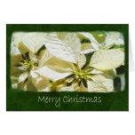 Yellow Poinsettias 2 - Merry Christmas Greeting Cards