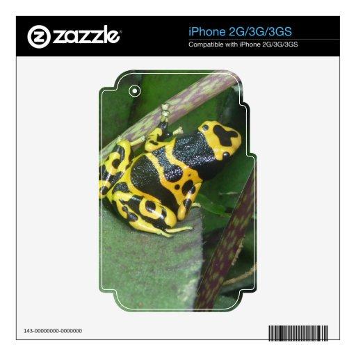 Yellow Poison Dart Arrow Frog iPhone 3G Skins