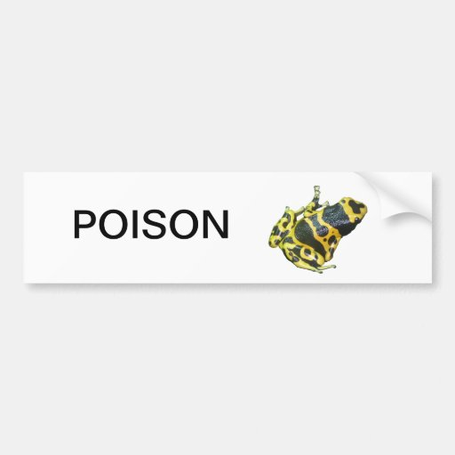 Yellow Poison Dart Arrow Frog isolated Bumper Stickers
