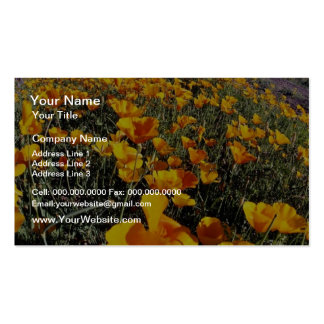 yellow Poppies, Organ Pipe Cactus National Monumen Business Cards
