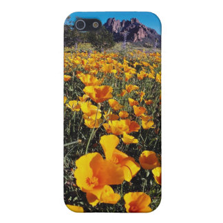 yellow Poppies, Organ Pipe Cactus National Monumen Cases For iPhone 5