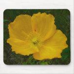 Yellow Poppy Pretty Alaskan Wildflower Mouse Pad