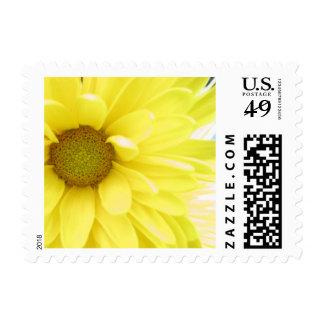 Yellow Postage