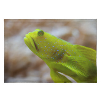 Yellow prawn-goby placemat