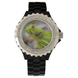 Yellow prawn-goby watch