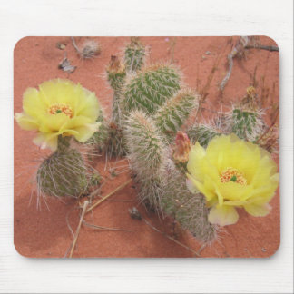 Yellow Prickley Pear cacti Mouse Pad