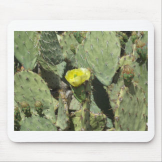 Yellow Prickly Pear Blossom Mouse Pad