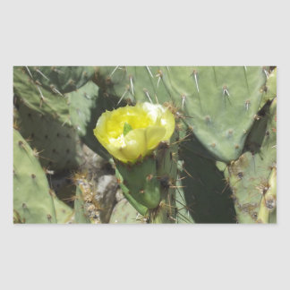 Yellow Prickly Pear Blossom Rectangular Stickers